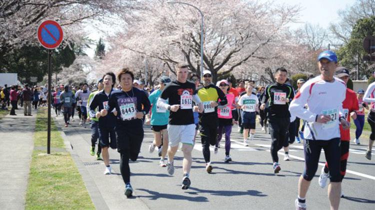 Cherry Blossom Fun Run & Walk